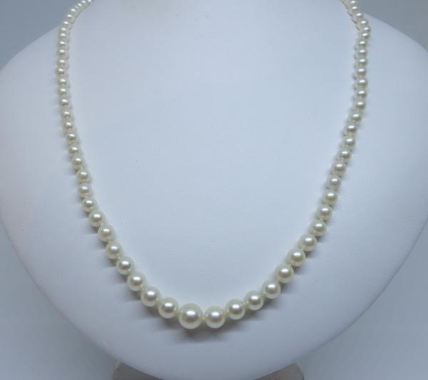collier de perle translation